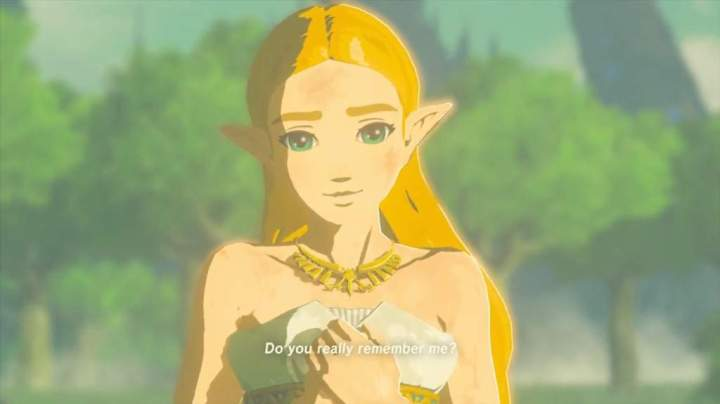 A strong, female playable character in Legend of Zelda