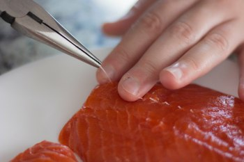 deboning a salmon filet