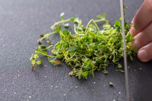 minced thyme