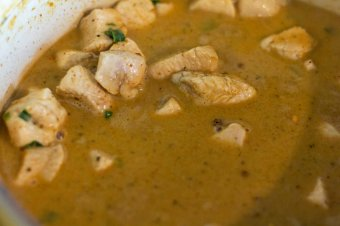 curry with coconut milk