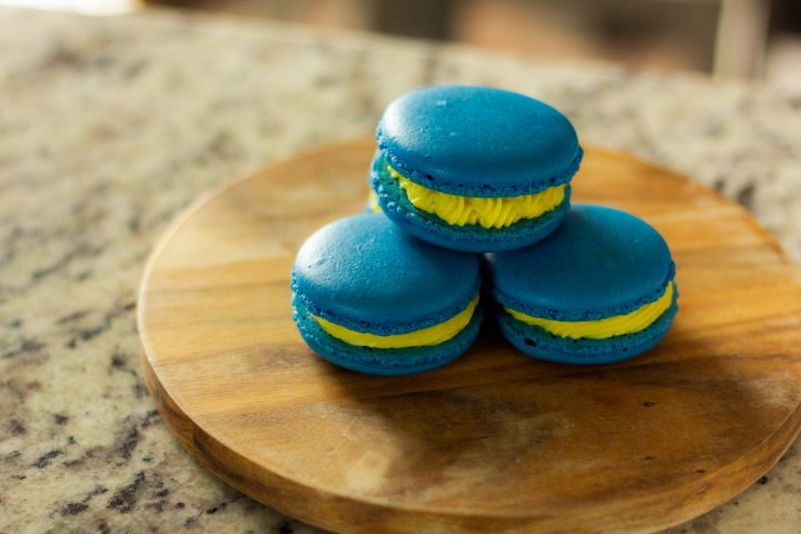 Boston Uprising Macarons